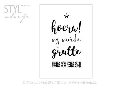 Poster Frysk Fries - Hoera - Wy wurde grutte broers!
